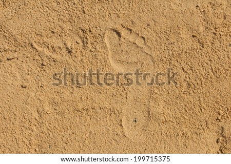 Single well-shaped human footprint in the sand on the beach - stock photo