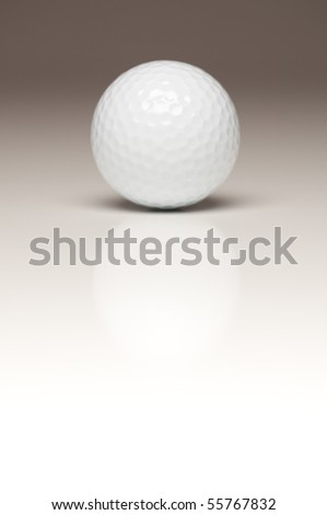 Single White Golf Ball on a Gradated White Background.
