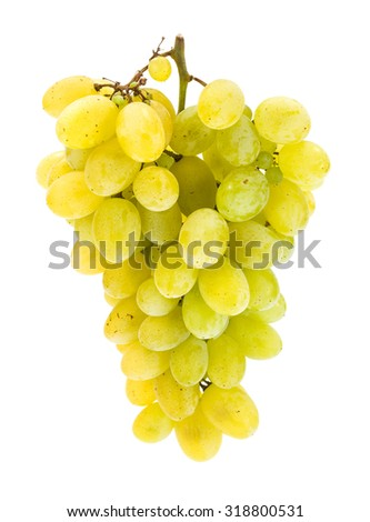 Single white grape cluster isolated on white