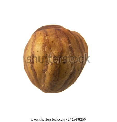 Single whole shelled hazelnut isolated on white - stock photo