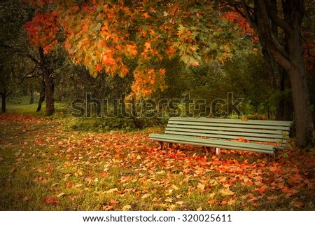 Single Wooden Green Bench In The  Autumn Park  With Colorful Trees On The Background. Solitude Concept