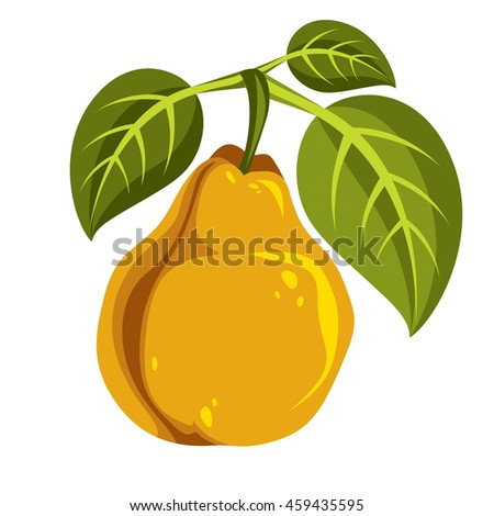 Single yellow simple pear with green leaves, ripe sweet fruit illustration. Healthy and organic food, harvest season symbol.  - stock photo