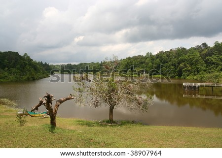 sinharaja rainforest, sri lanka - stock photo