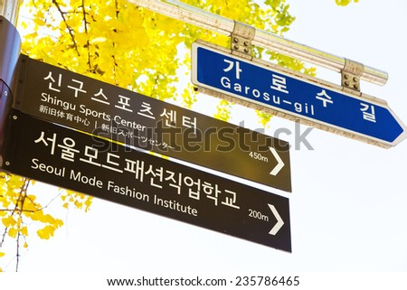 Sinsa-Dong area. This street in Kangnam (South of river) area has nonstop fashion stores for men and women, accessories, bag, stationery stores and coffee shops, - stock photo