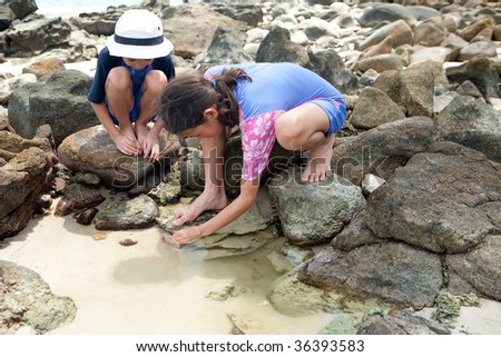 Sister and brother exploring the rock pool on the beach. - stock photo