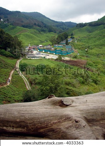 Sit down & relax at Tea plantation, Cameron Highland- Malaysia - stock photo