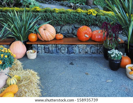 Sitting bench with arranged fall produce on a Thanksgiving display - stock photo