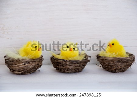 Sitting Easter Chicks Easter Baskets Nest With Yellow Feathers On White Wooden Background With Copy Space Free Text Or Your Text Here For Advertisement Or Happy Easter Greetings Or Easter Decoration - stock photo