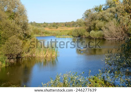 Sitting in an inflatable boat fisherman catches a fish in the river, the banks of reeds and trees
