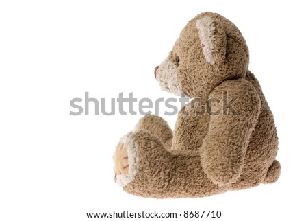 Sitting teddy bear - isolated on white. - stock photo