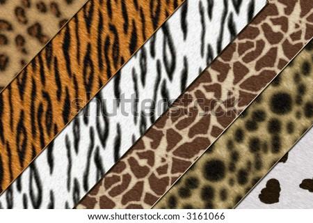 Six African wild animals skin background texture - stock photo