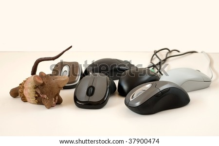 Six computer mice and a funny mouse toy on a white background - stock photo