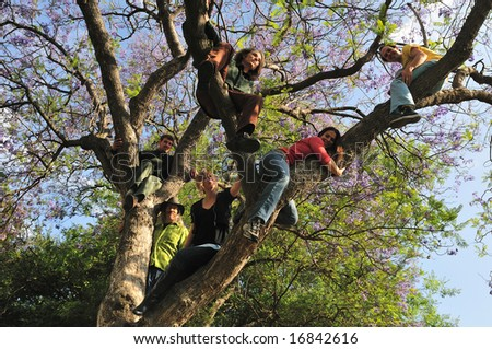 Six friends hanging out high up in a jacaranda tree - stock photo