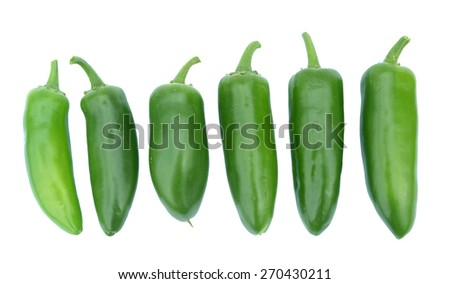 six  Jalapeno Peppers isolated on White Background  - stock photo