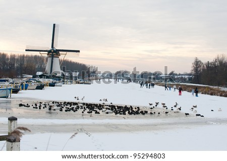 skate-fun with a ice hole and waterbirds - stock photo
