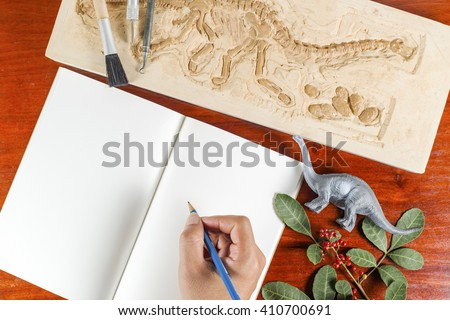 Skeleton and archaeological tools.Training for record history of fossil.Simulated same as real digging. - stock photo