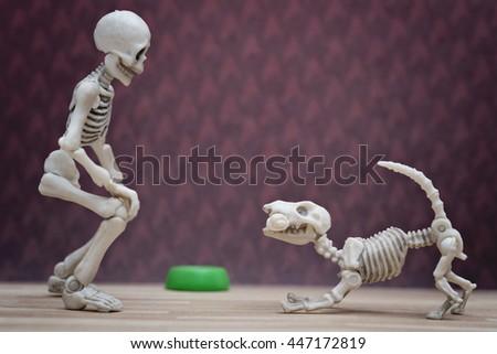Skeleton and his skeleton dog - stock photo
