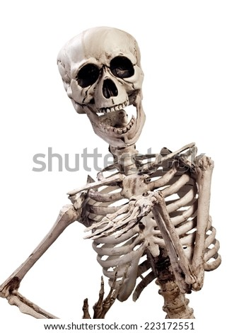 Skeleton, close up - stock photo