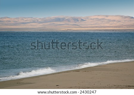 Skeleton Coast, Cape Cross, Namibia - stock photo