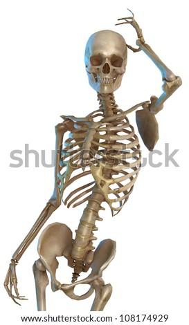 skeleton fashion - stock photo