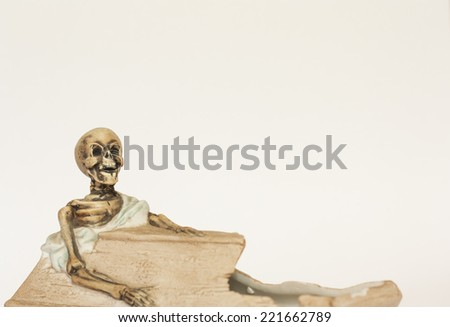 Skeleton figurine with a shroud sitting in coffin