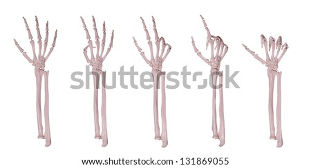 skeleton hands counting 1-5 - stock photo