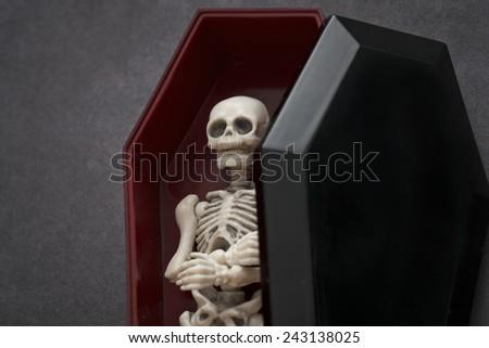 Skeleton in the coffin - stock photo