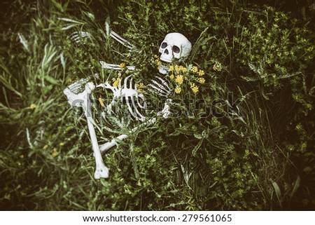 Skeleton in the Grass 6. Human skeletal bone remains among the grass, weeds and dandelions of a field meadow. Edited with a vintage film effect. - stock photo