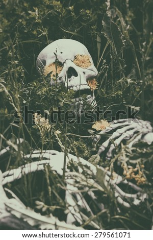 Skeleton in the Grass 4. Human skeletal bone remains among the grass, weeds and dandelions of a field meadow. Edited with a vintage film effect. - stock photo