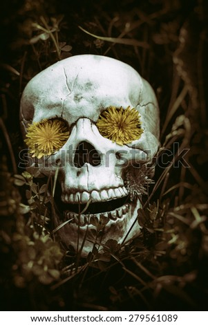 Skeleton in the Grass 2. Human skeletal bone remains among the grass, weeds and dandelions of a field meadow. Edited with a vintage film effect. - stock photo