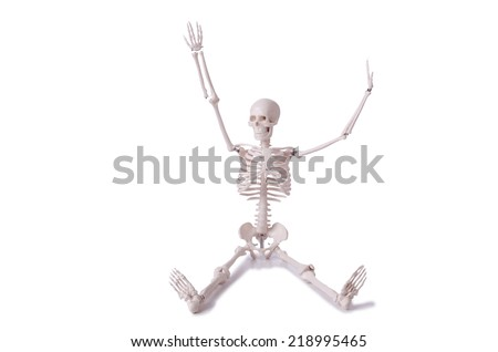 Skeleton isolated on the white background - stock photo