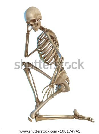 skeleton kneeling - stock photo