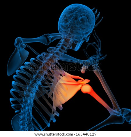 Skeleton of the man with the backbone - pain shoulder - stock photo