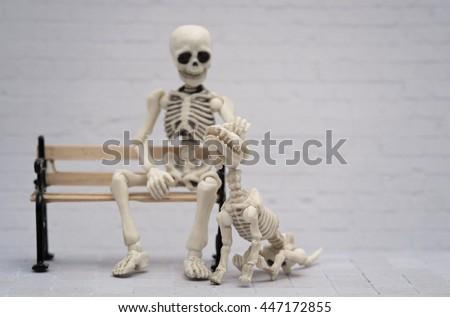 Skeleton petting his skeleton dog - stock photo
