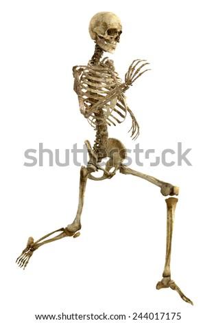 skeleton running - stock photo