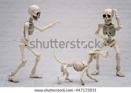 Skeleton's arm joke - stock photo