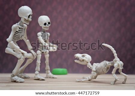 Skeleton's family dog - stock photo
