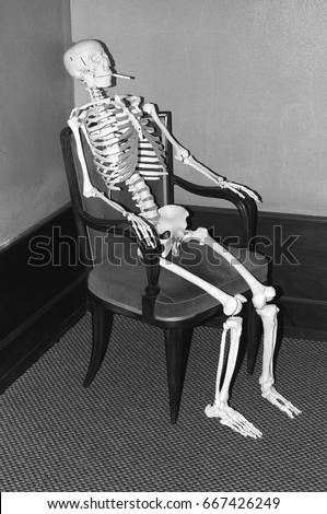 Sitting Skeleton Stock Images Royalty Free Images