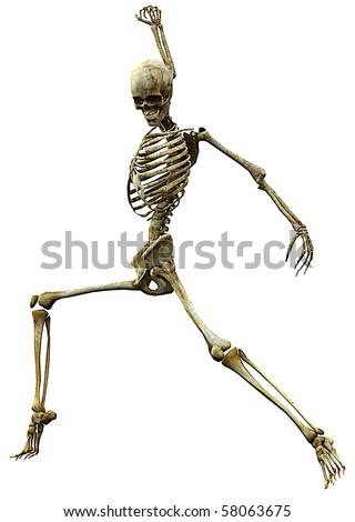 skeleton tango dance - stock photo