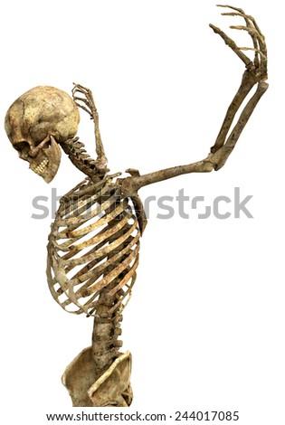 skeleton the prayer close up - stock photo