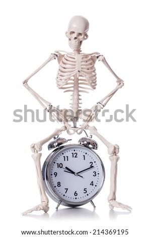 Skeleton with alarm clock on the white - stock photo