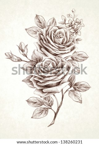 Sketch a rose bouquet  in simple background - stock photo