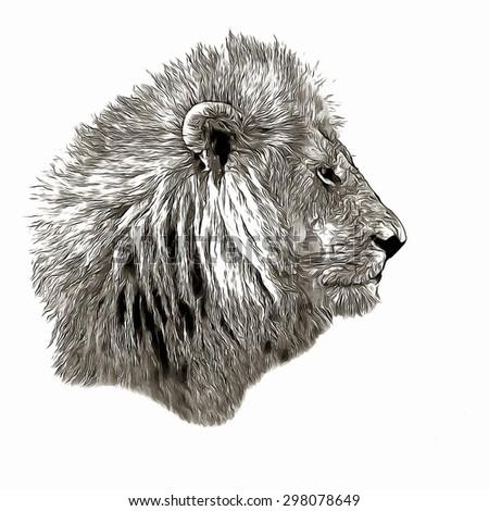 Sketch lion profile - stock photo