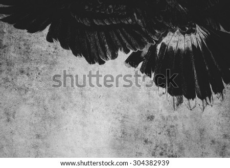 Sketch made with digital tablet of american eagle - stock photo
