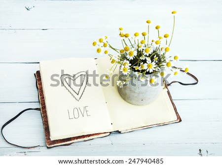 sketchbook with heart drawing  and daisy flowers in a pot. Love. - stock photo