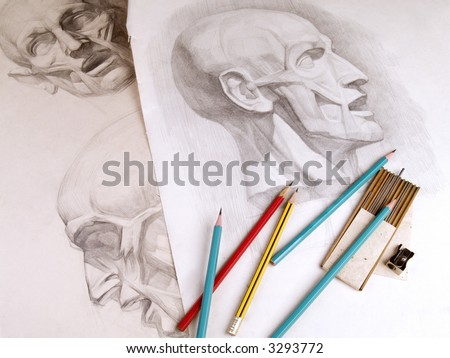 Sketches of human head anatomy and pencils