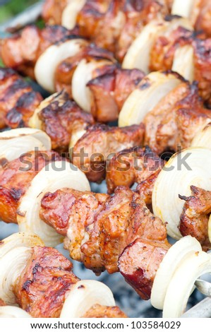 Skewers on the roast