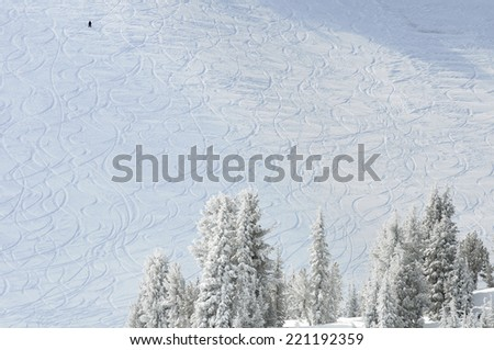Ski and Snowboard tracks on mountainside