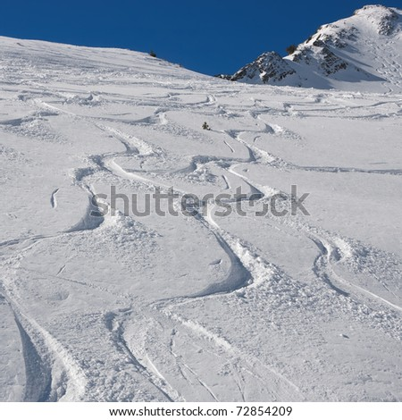 ski and snowboard tracks on powder snow - stock photo
