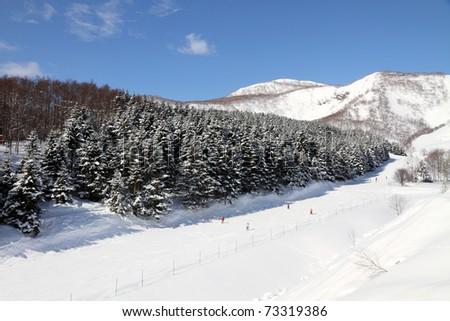 ski fun - stock photo